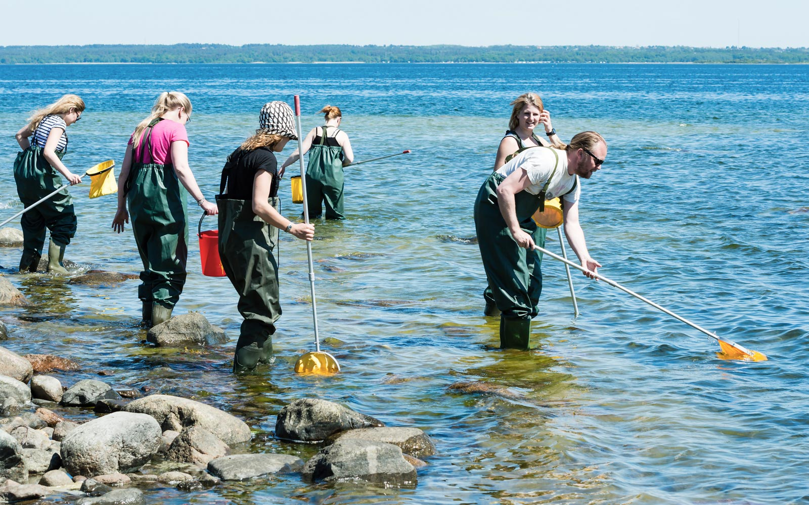 Small group wading in and examining shallow coastal water with ring nets