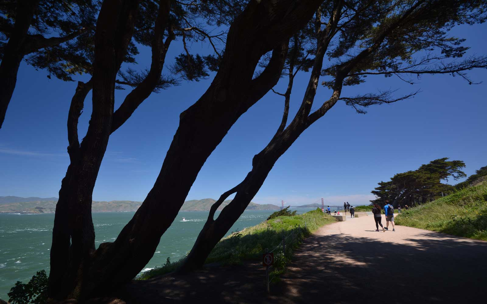 View from a path in Lands End park in San Francisco, looking over coastal water with the Golden Gate Bridge in the distance